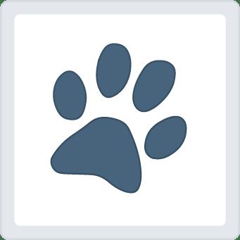 Udomi psa