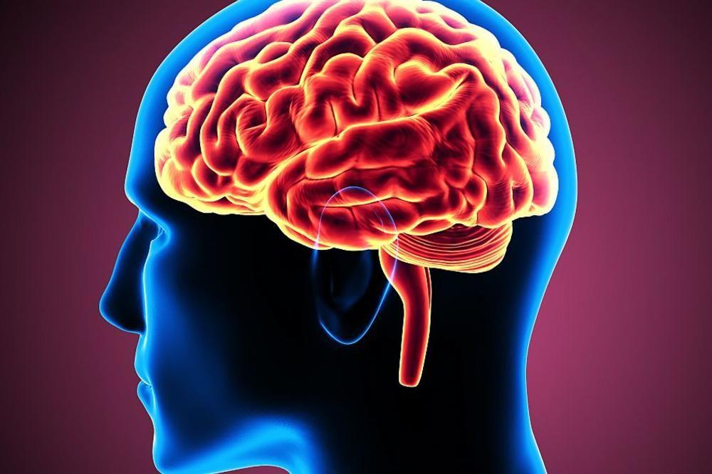 Светски дан борбе против Алцхајмерове болести: Рана дијагноза и правовремено лечење кључни