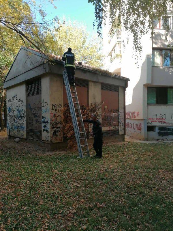 Foto: Građani Šapca