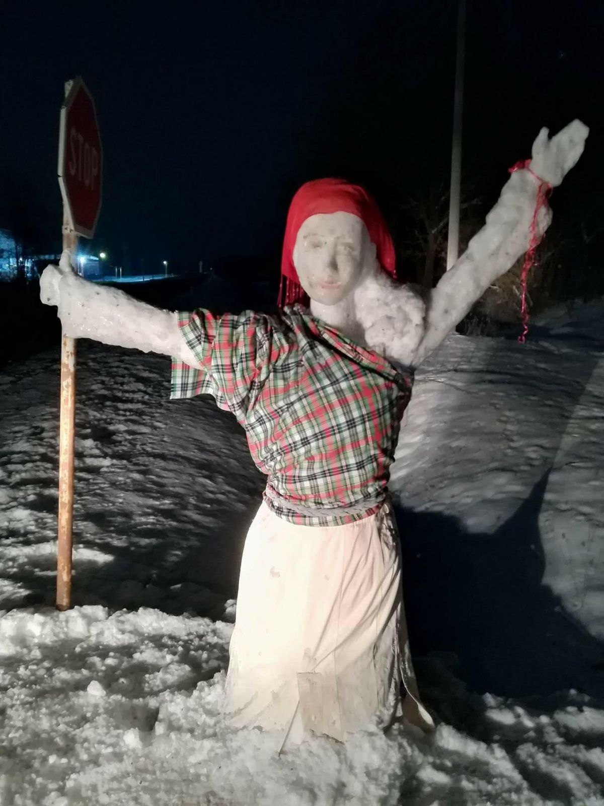 Креативност на минус 16: Снежна аутостоперка