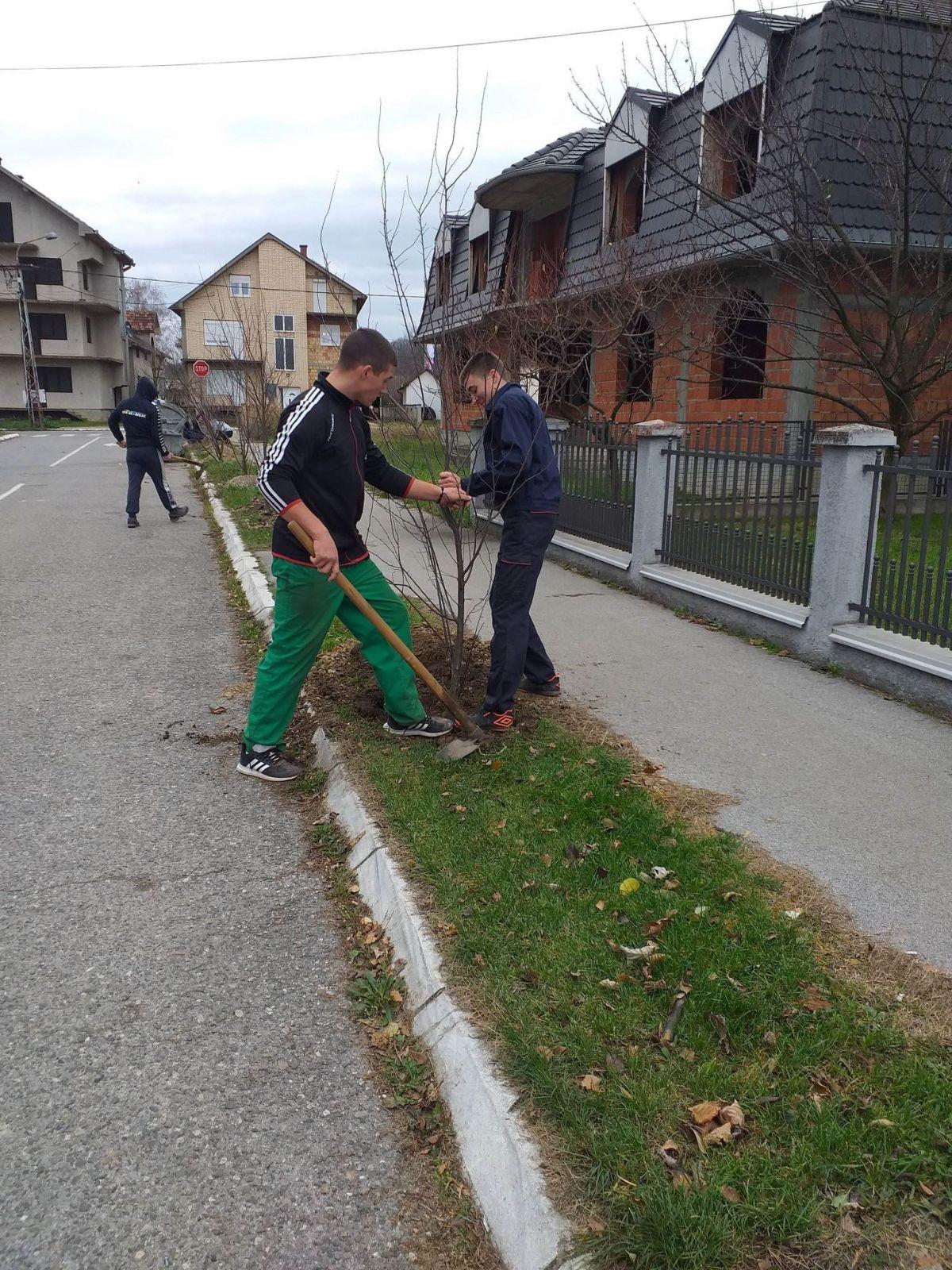 Нови дрвореди у Теслиној  и Улици Вука Караџића