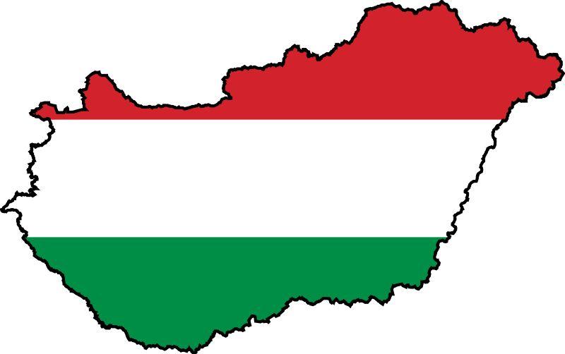 РСЕ: Из Србије у Мађарску ради тестирања на ковид-19