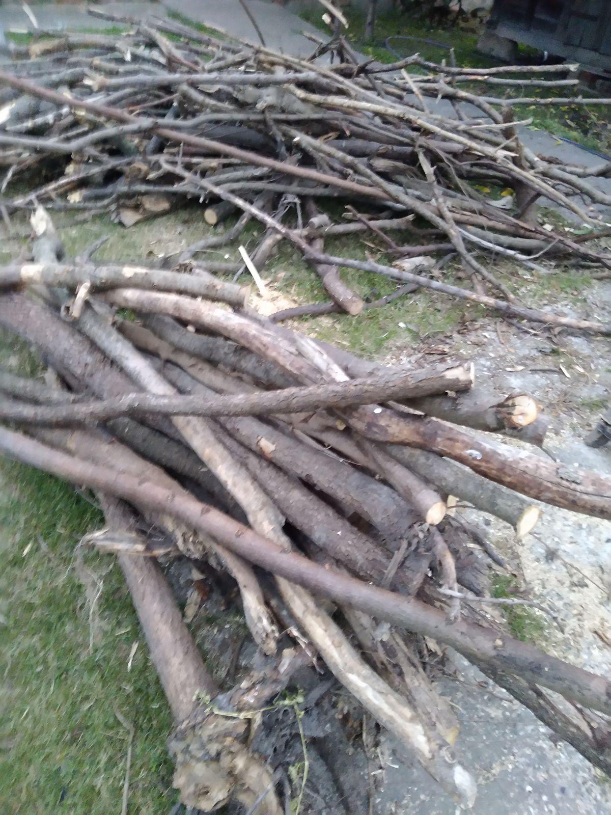 Шабачким пензионерима 1.800 кубика огревног дрвета