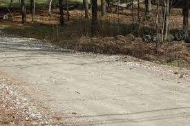 Шљунчење путева и уређење гробља предлози у Орашцу за непосредно изјашњавање