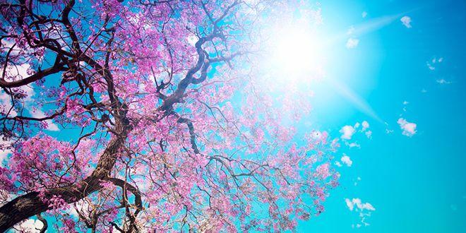 """Možda proleće """"navrati"""""""