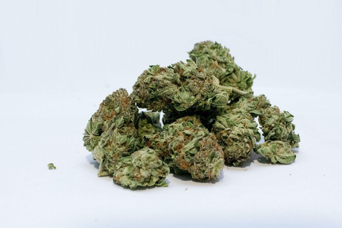 Pronađena marihuana