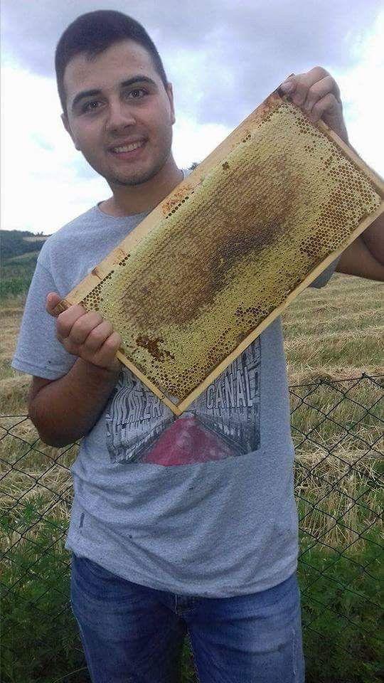 Кувар прави најслађи мед