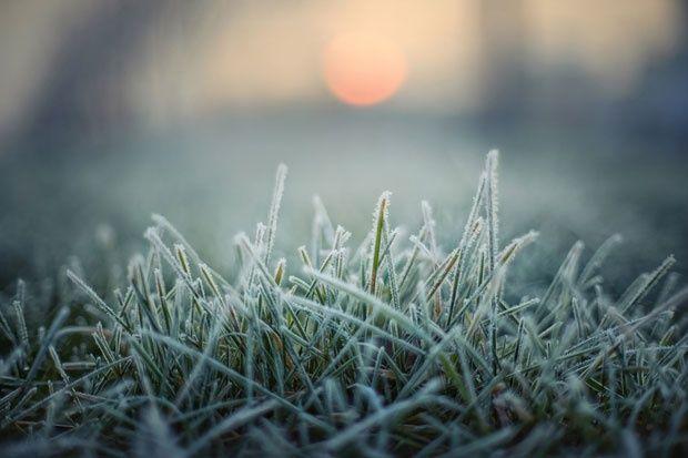 Ujutru mraz, tokom dana toplije