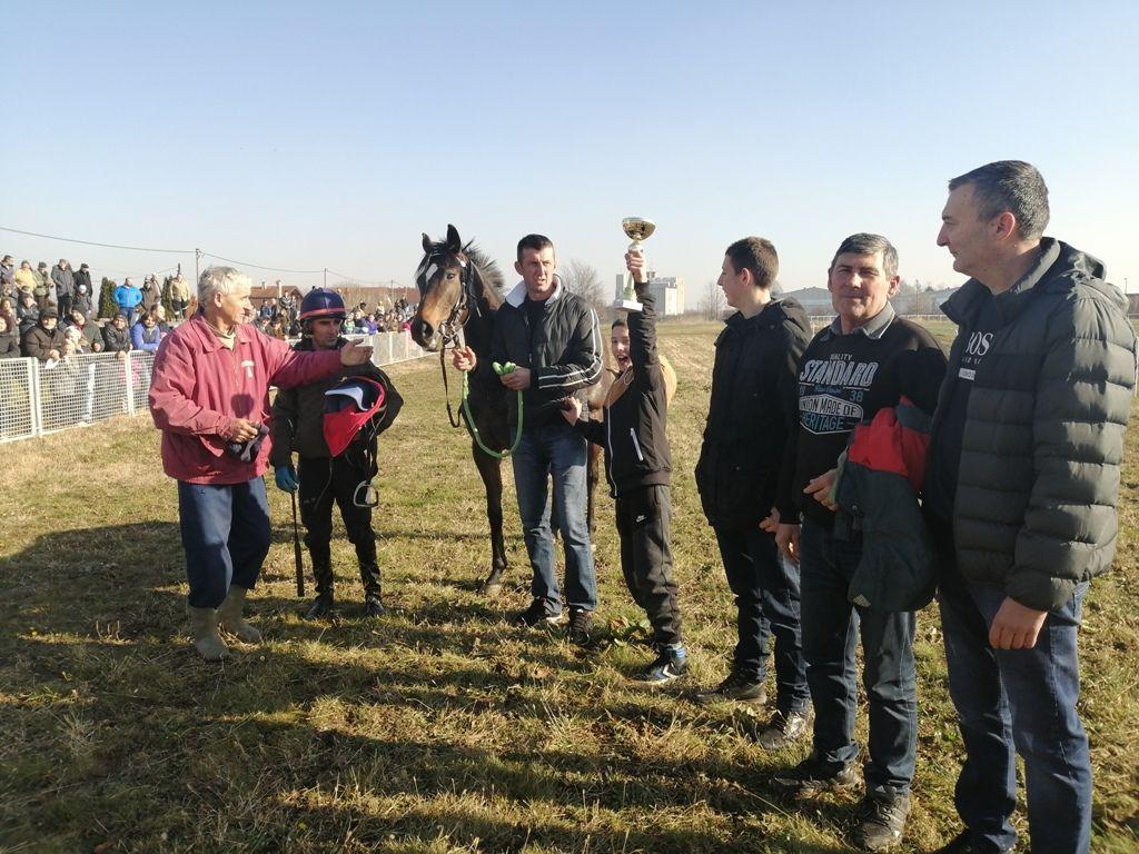 Коњи су понос мачванске равнице