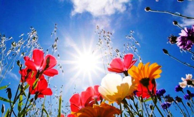 Сутра сунчано и топлије