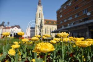 У Србији сутра претежно сунчано и топлије време