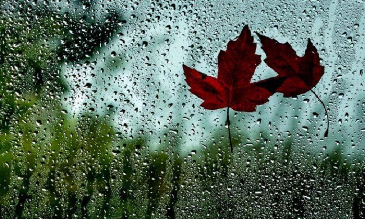 Данас тмурно,кишовито и хладно