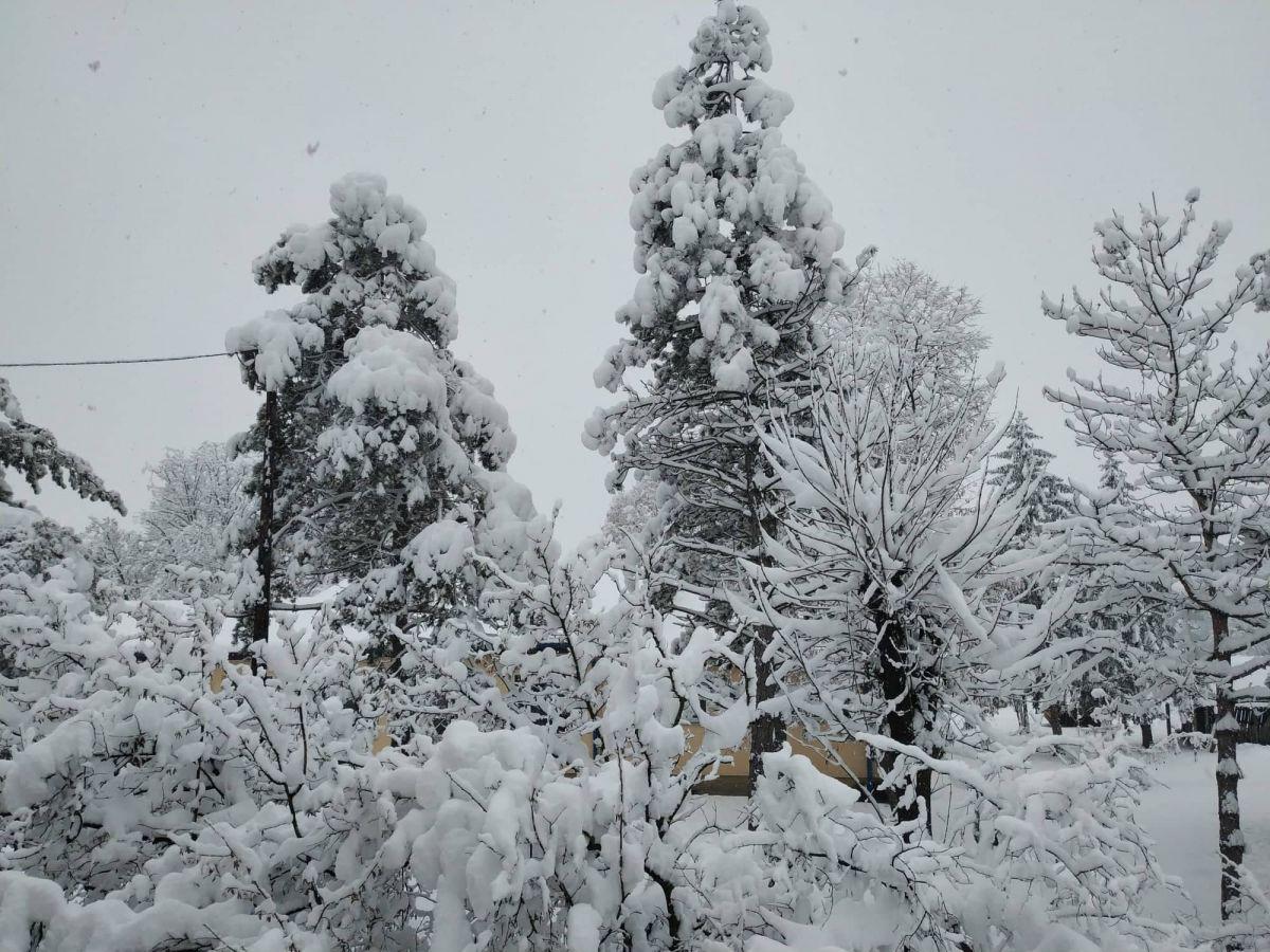 U Srbiji danas oblačno vreme, temperatura do minus 12