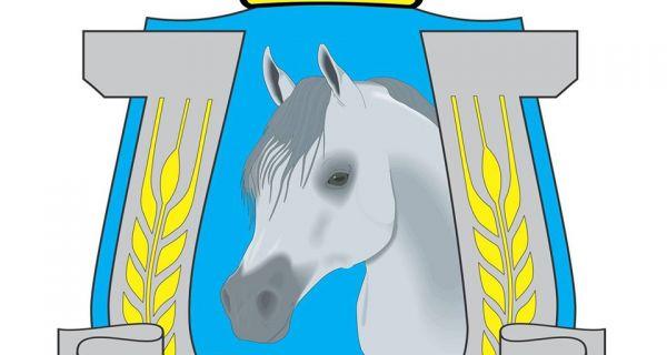 Коњичка забава