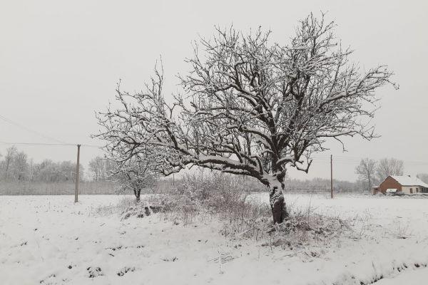 У Србији сутра облачно време, местимично са снегом