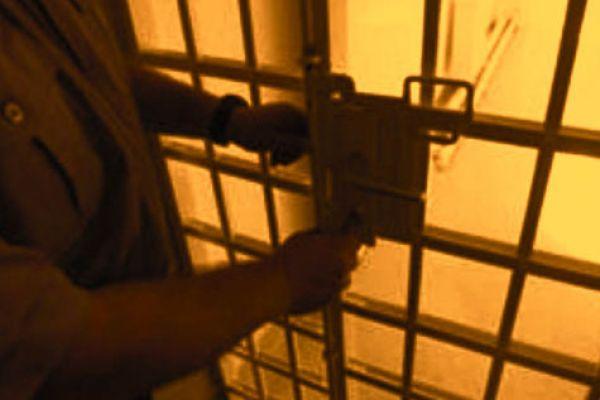 Uhapšena kradljivica