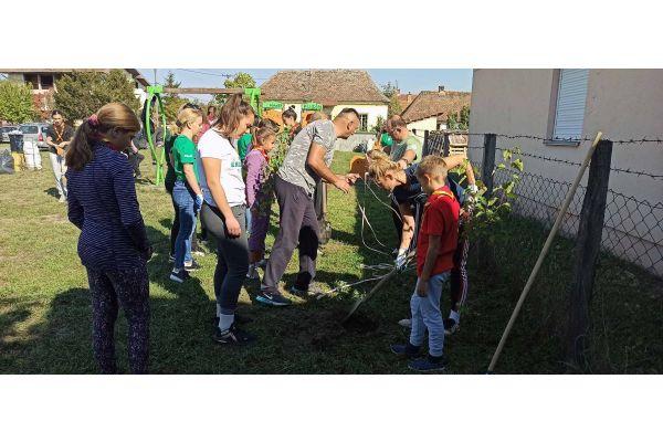 Sadnja drveća i uređenje dečijeg igrališta u Klenju