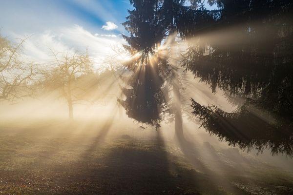 Hladno jutro, tokom dana sunčano