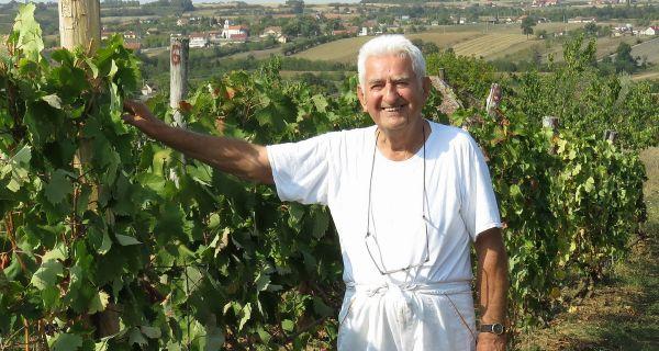 Виноградарство тражи  пажњу и посвећеност