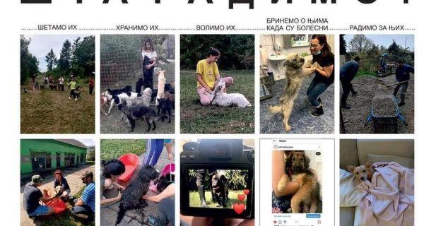 Пси из шабачког Прихватилишта добили заштитнике