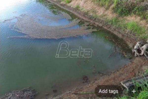Рио Тинто тврди да обојена вода у Горњим Недељицама нема везе са њиховим истраживањем