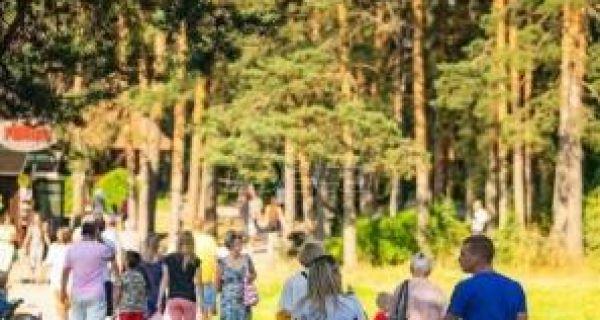 """Туристичка организација Србије:у августу се тражио """"кревет више"""""""