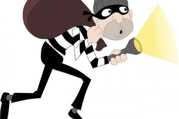 Uhapšeni kradljivci