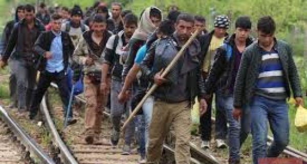 Мигранти у Србији