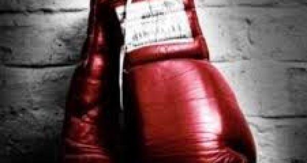 Славље шабачког бокса