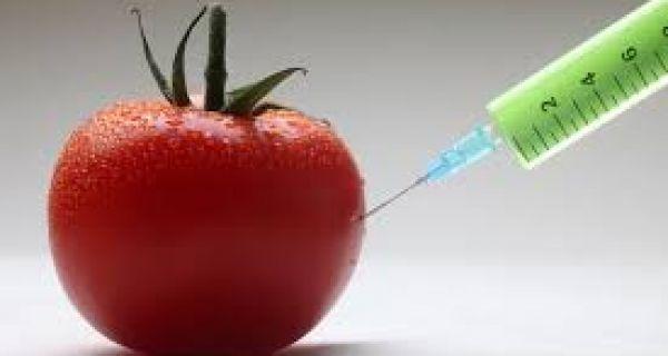 Зелена странка: Повући предлог закона, омогућава ГМО