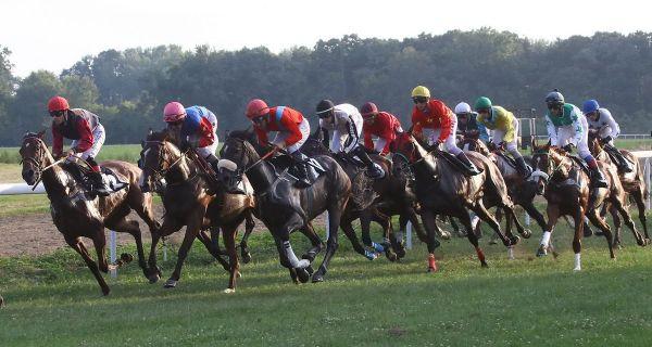 Konjičke trke sutra u Šapcu