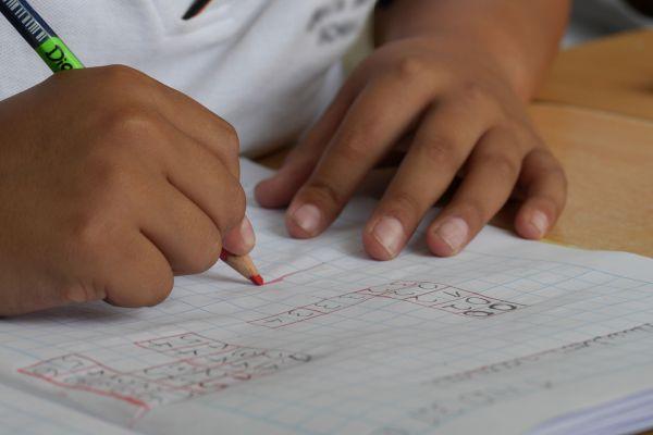 Učenici nižih razreda pohađaju nastavu redovno, viši razredi i srednjoškolci ostaju onlajn
