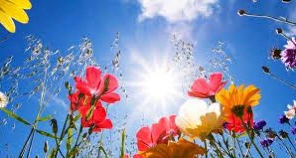 Sunčano i toplo