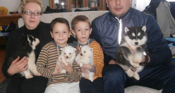 Срећна породица