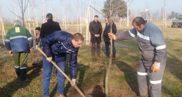 """""""Пасубио"""" даривао 127 садница"""