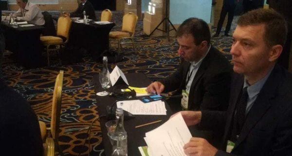 Зеленовић на седници Комитета за мониторинг Савета Европе