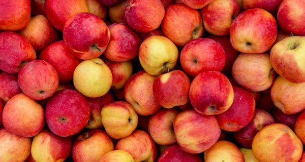 Српски воћари могли би да профитирају од несташице јабука у ЕУ