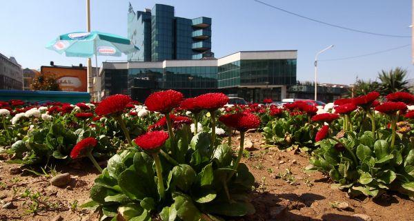 Prolećno uređenje grada