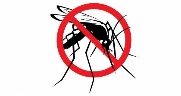 Suzbijanje larvi komaraca u sredu, četvrtak i petak