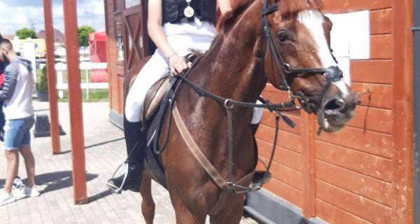 Данас нешто захтевније:  коњички спорт