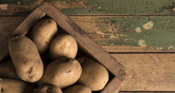 Важне карактеристике неких сорти кромпира