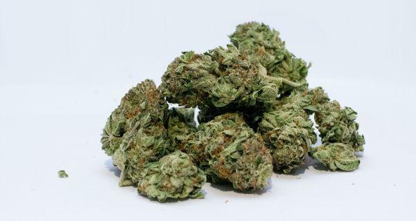 Пронађена марихуана