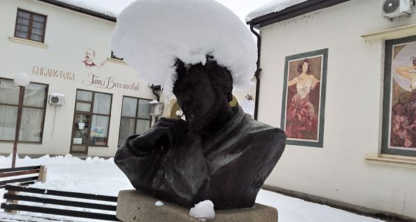 Снежни, Ледени Милић