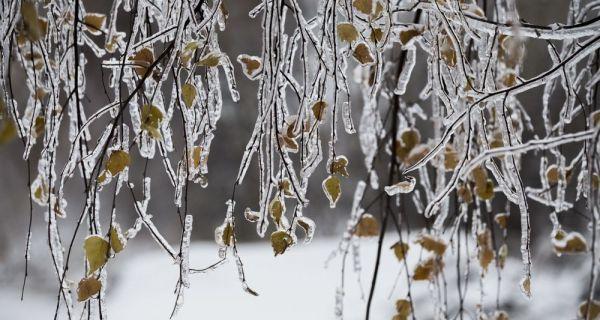 Jovanjski mraz
