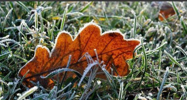 Јутрос мраз, током дана сунчано време