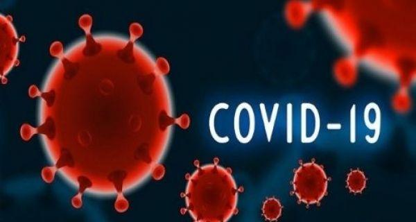 Korona virus za danas od 15 časova