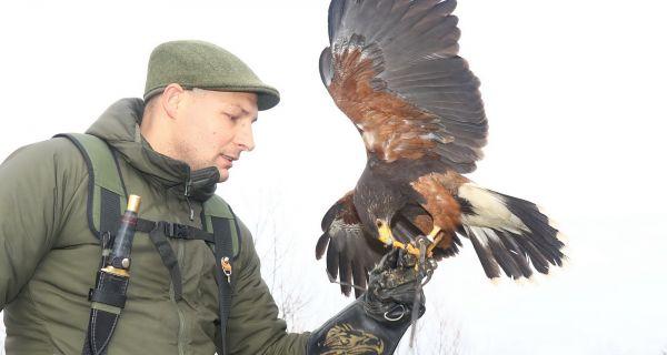 Исконска повезаност човека и птице