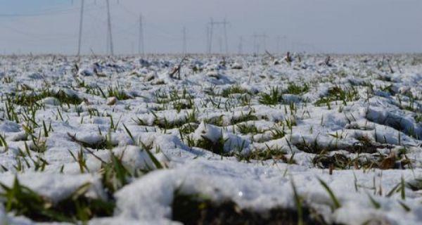 Oblačno, moguć slab sneg