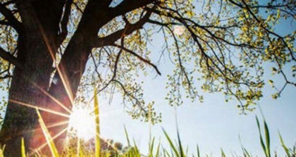 Сутра јутро свеже, дан углавном сунчан