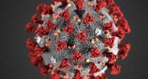 Jедна особа преминула, а 48 новозаражених корона вирусом у Србији